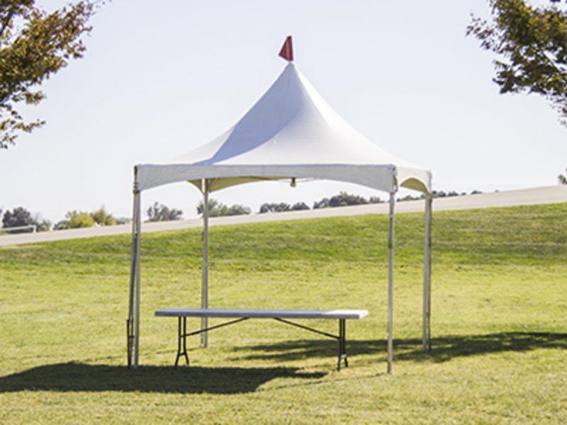 canopy10x10